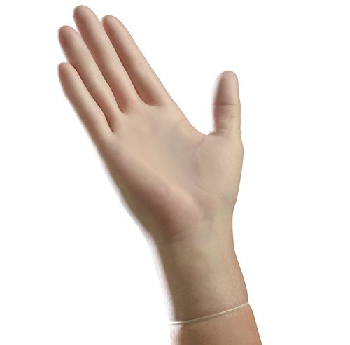 Powder-free Vinyl Gloves